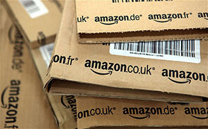 Amazon300