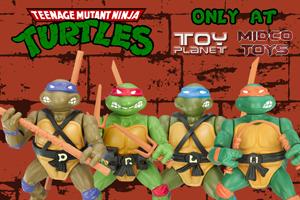 Turtles-300